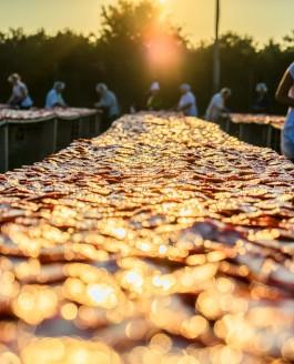 Das Gold der Sonne Apuliens